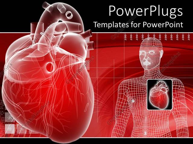 Anatomy powerpoint templates