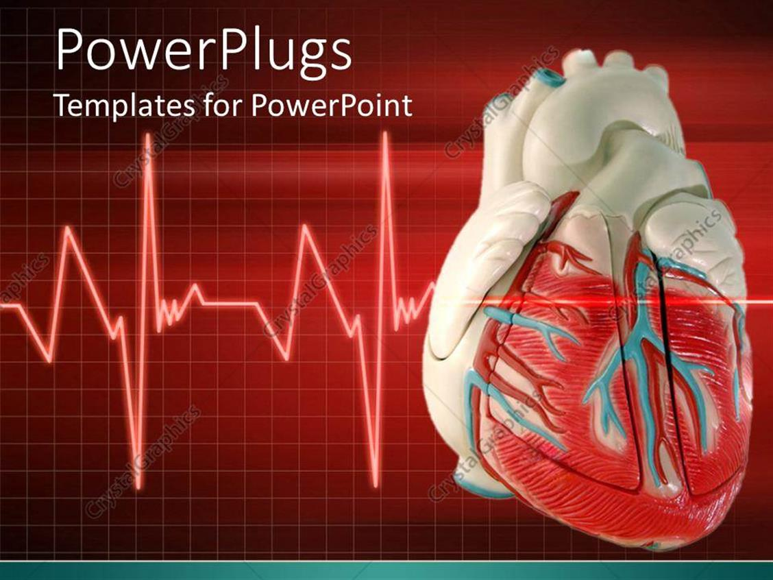powerpoint template: a 3d heart with an eco cardiogram wave line, Modern powerpoint