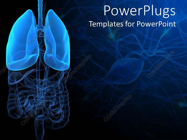 powerpoint template: 3d representation of lungs and human anatomy, Modern powerpoint
