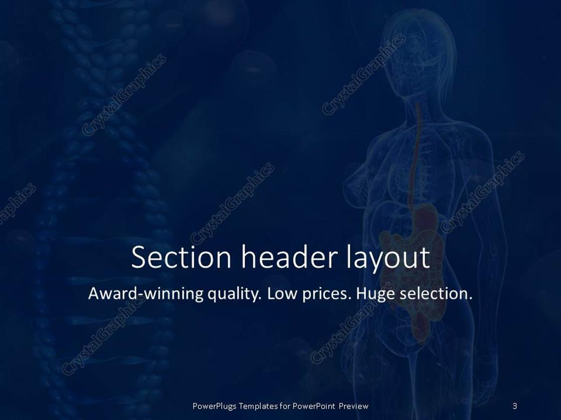 Anatomy ppt templates free download brettfranklin powerpoint templates free anatomy choice image powerpoint powerpoint templates alramifo Choice Image