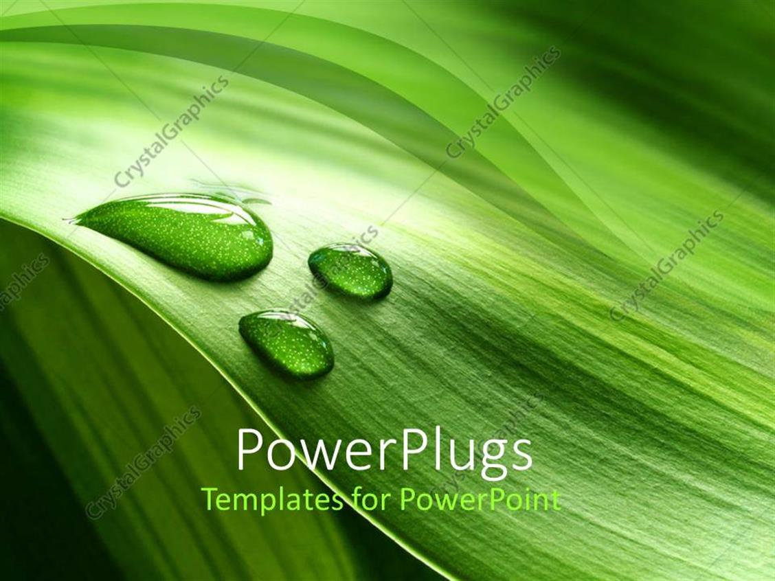 powerpoint template a background of green plant leaf with