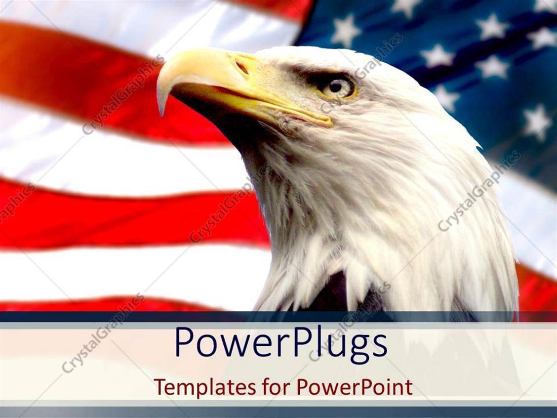 American flag powerpoint template eliolera powerpoint template bald eagle with american flag white toneelgroepblik Gallery
