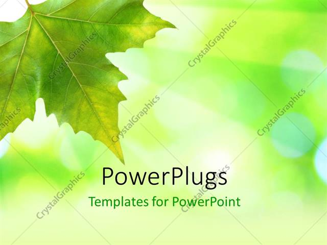 Powerpoint Template: Beautiful Green Leaves With Green Background