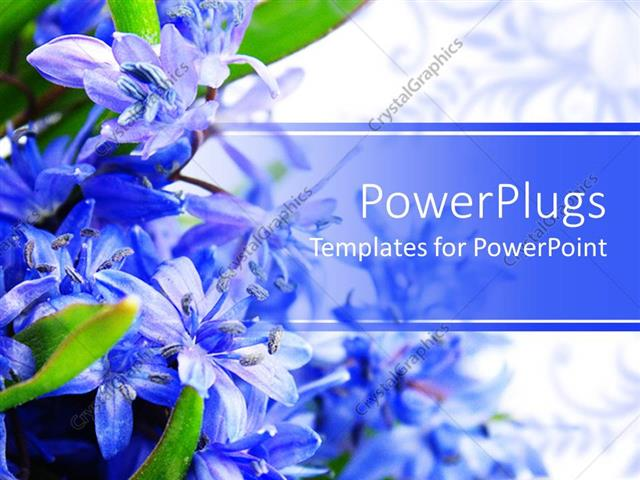Powerpoint Template: Beautiful Spring Flowers Placed On A Side And