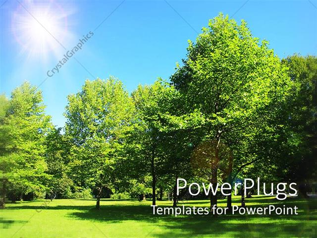 Powerpoint template a beautiful sunny day and a group of trees powerpoint template displaying a beautiful sunny day and a group of trees toneelgroepblik Images
