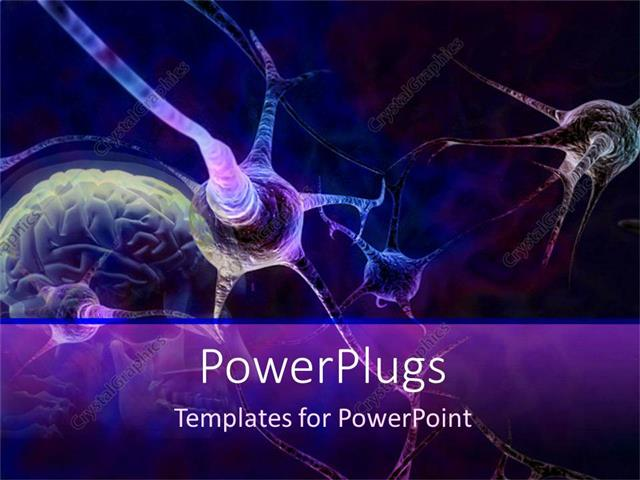 Powerpoint Template: Blue And Purple Neurons Connecting In Brain