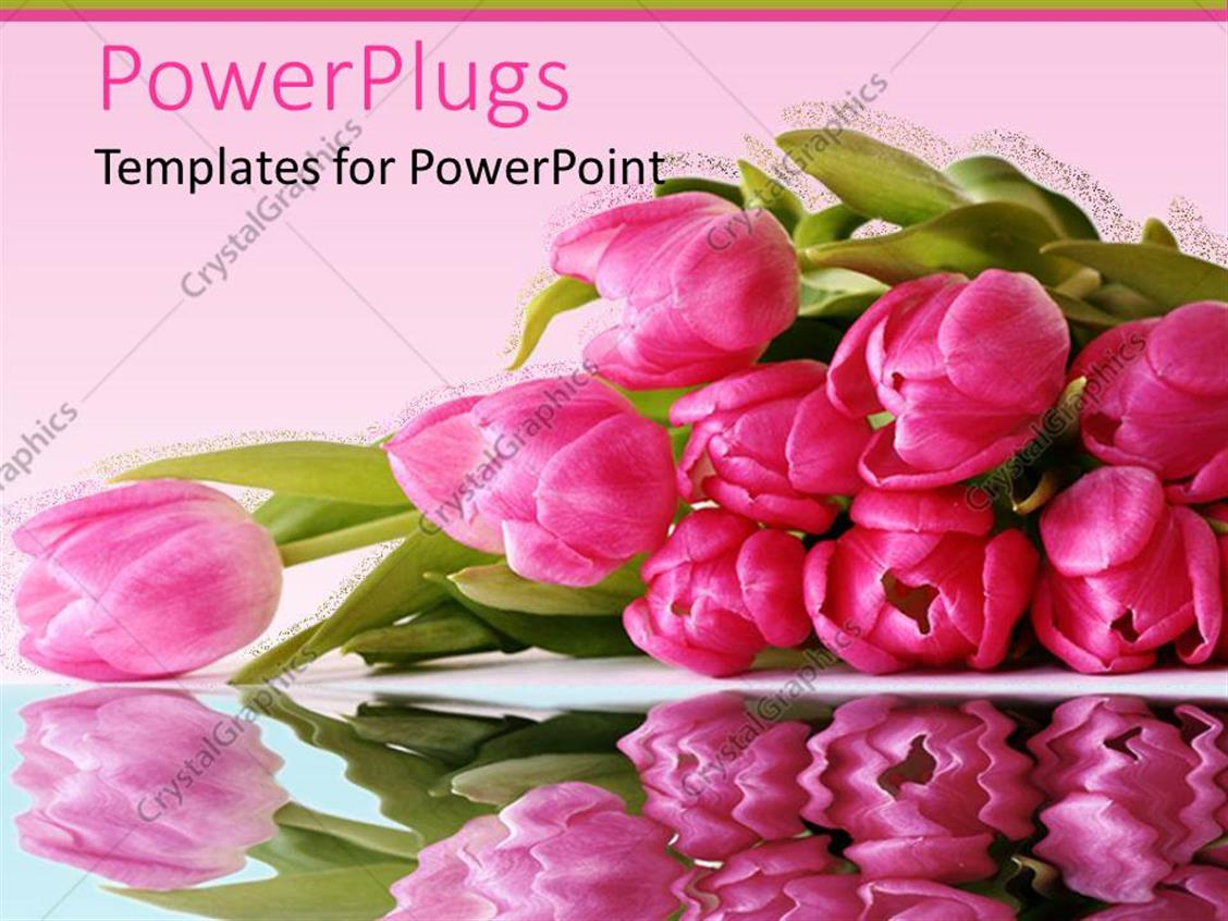 PowerPoint Template Displaying Bunch of Pretty Pink Flowers on a Pink Background