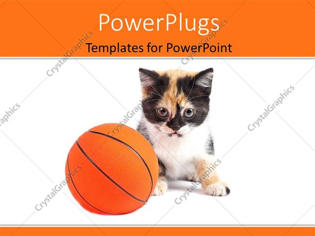Powerpoint Template: A Cat With A Basketball And White Background