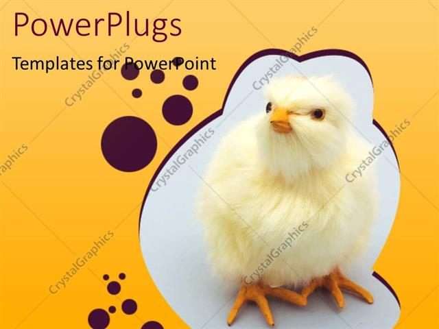 PowerPoint Template Displaying Chick Theme