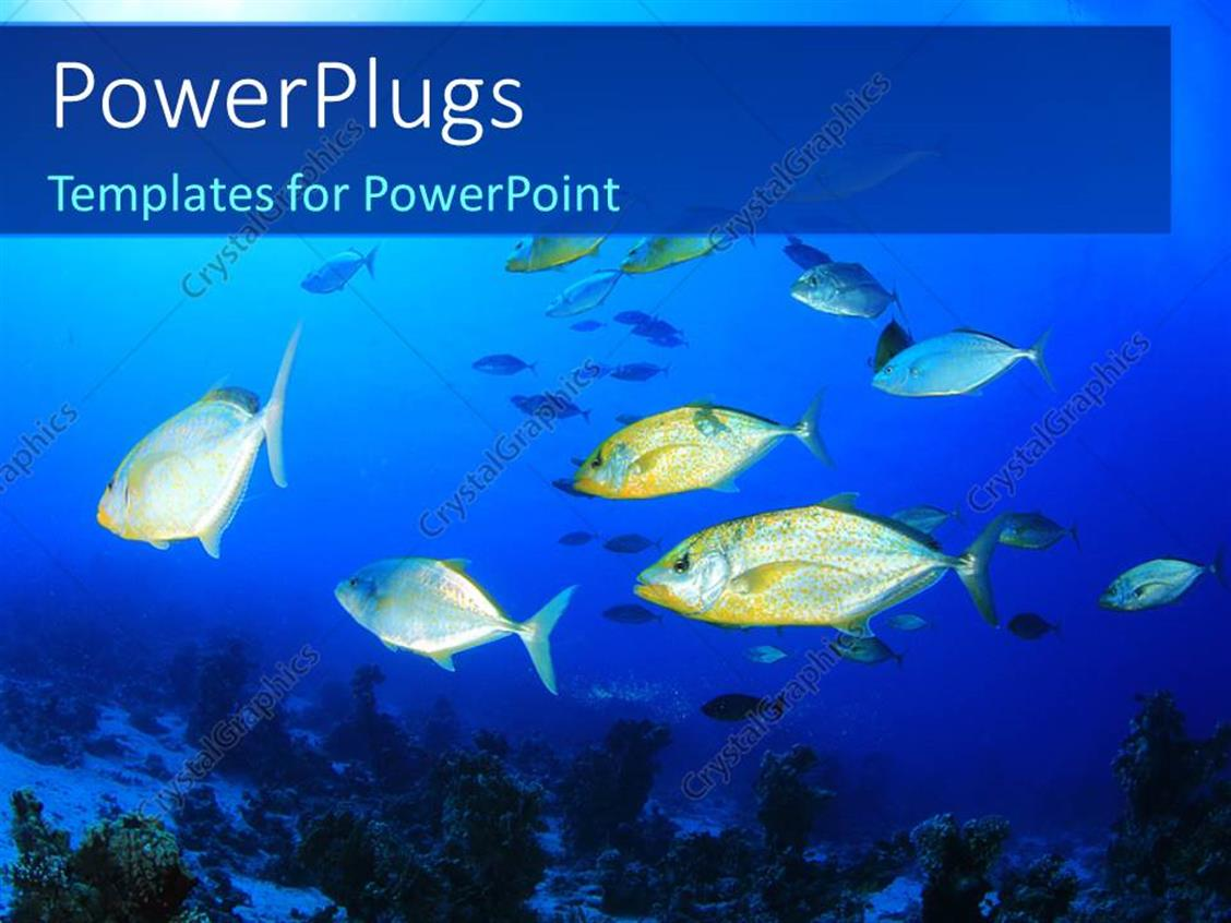 biology powerpoint template gallery - templates example free download, Modern powerpoint