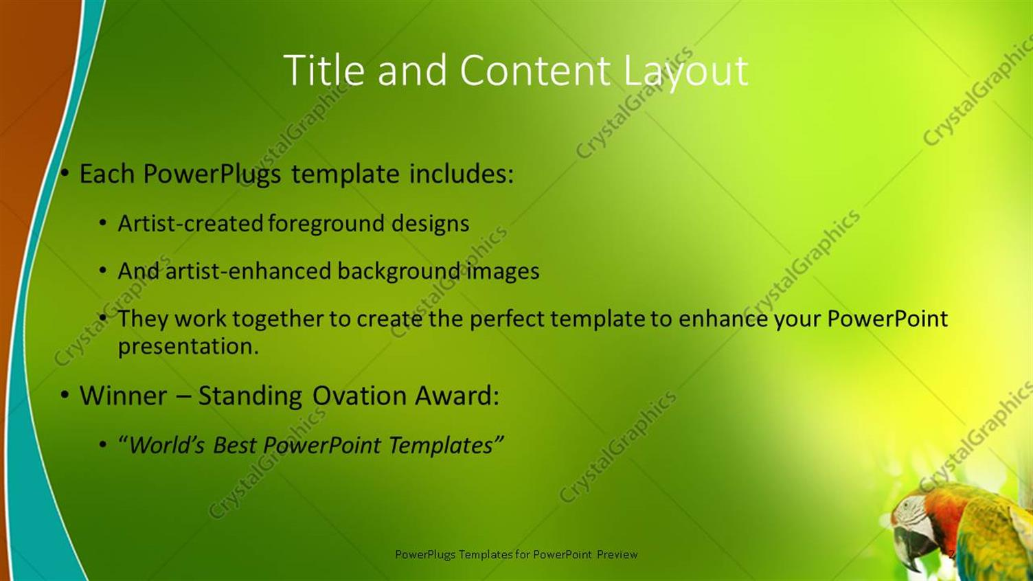 powerpoint template close up of colorful parrot over blurry