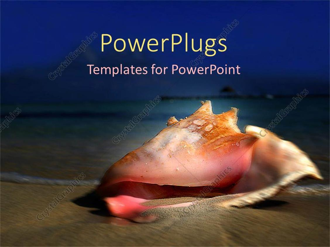PowerPoint Template Displaying Conch Shell Seashell on the Beach, Vacation, Travel, Island, Holiday