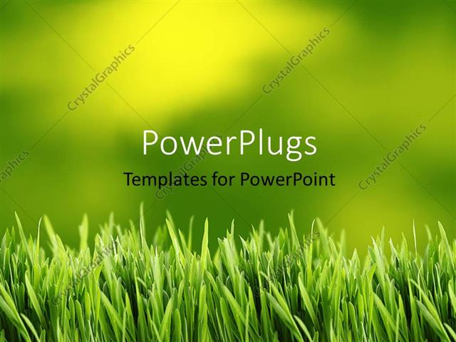 powerpoint template: green and yellow grass background (14970), Modern powerpoint