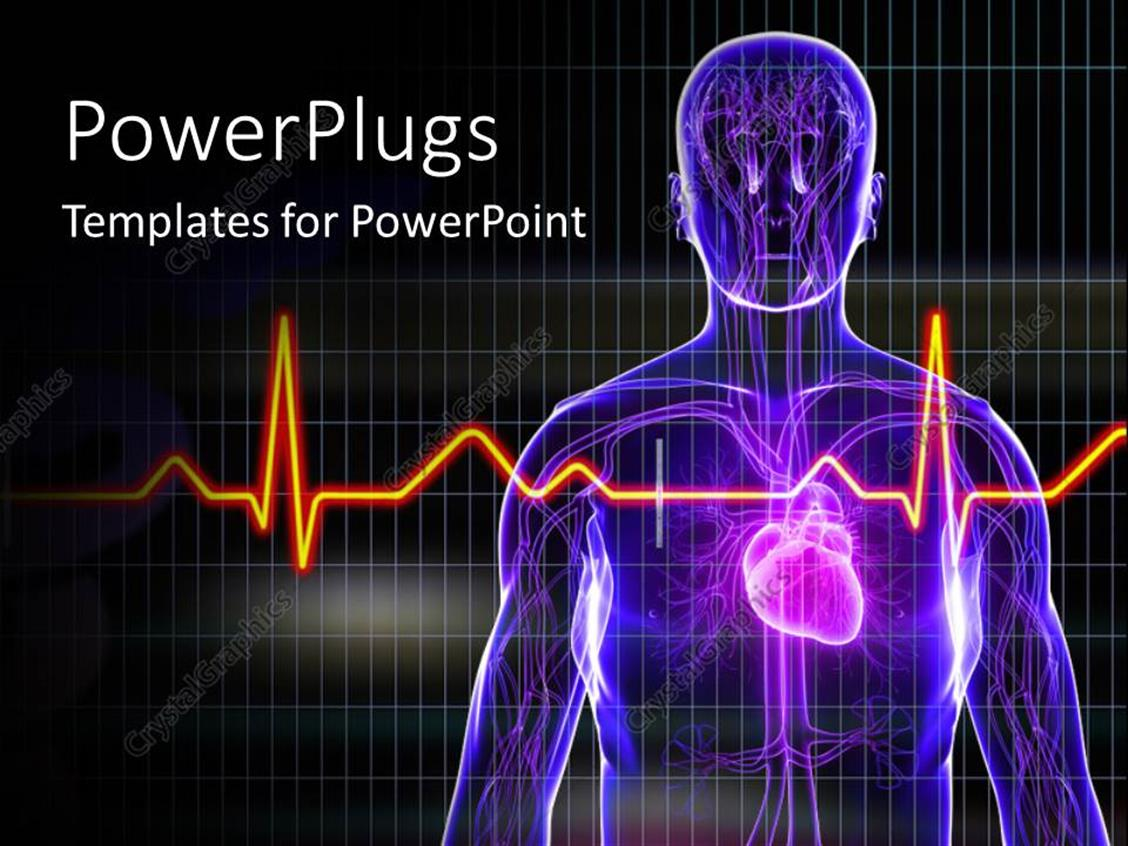 Powerpoint template human anatomy with heart and ecg rays for Cardiac ppt template