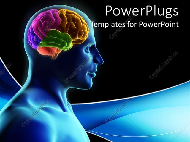 Powerpoint Template: Human Silhouette With Parts Of The Brain In