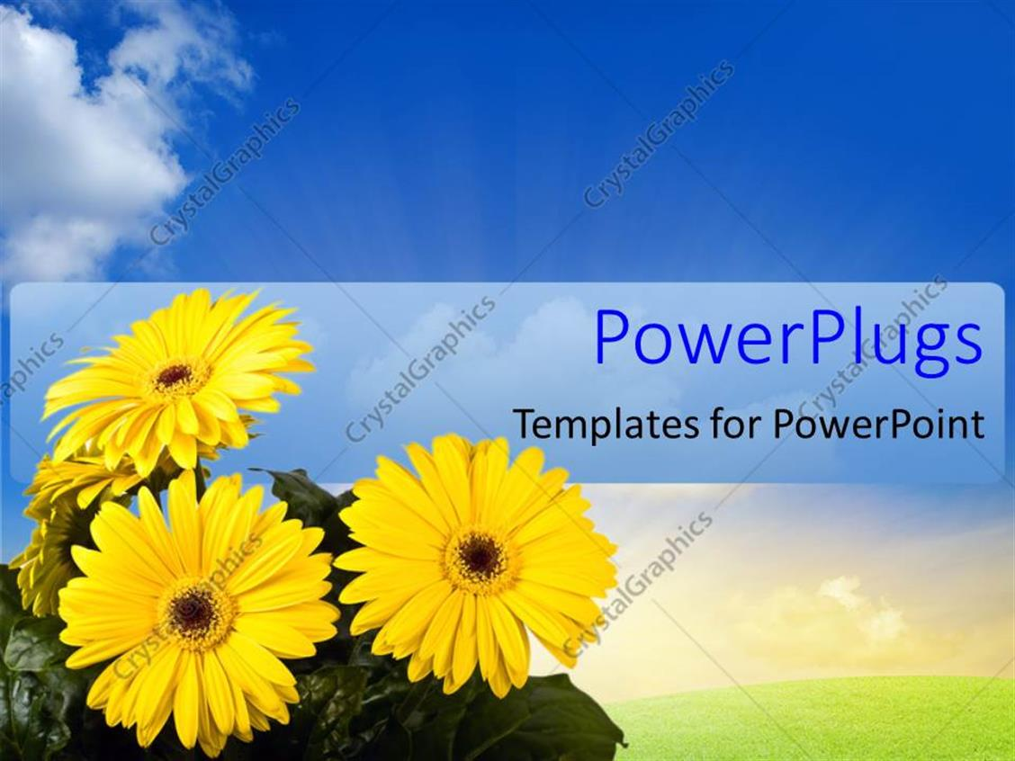 ... Summer Powerpoint Background Powerpoint Template A Number Of Flowers  With Leaves And Bluish ...