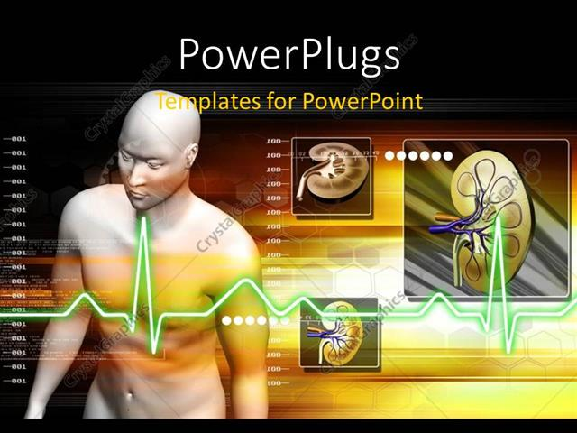 Powerpoint template a person naked with kidneys in the background powerpoint template displaying a person naked with kidneys in the background toneelgroepblik Choice Image