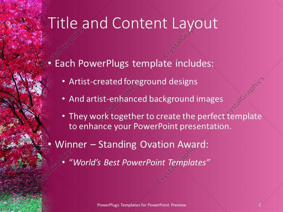 powerpoint template: pink japanese maple trees in fall autumn, Modern powerpoint