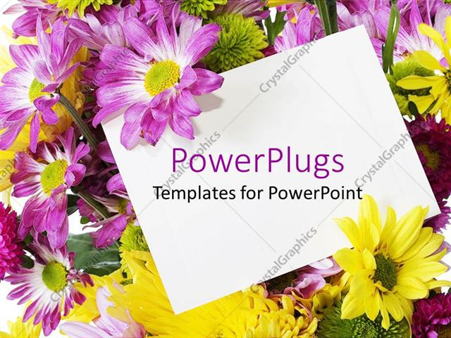 Powerpoint Template Purple And Yellow Spring Flowers Behind A