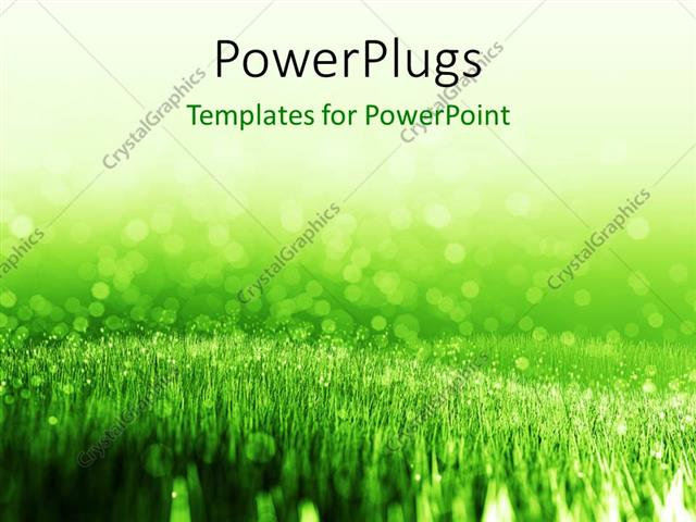 powerpoint template: spring background with green summer grass and, Modern powerpoint