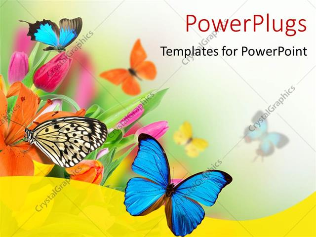 Powerpoint Template Spring Flowers With Exotic Butterflies