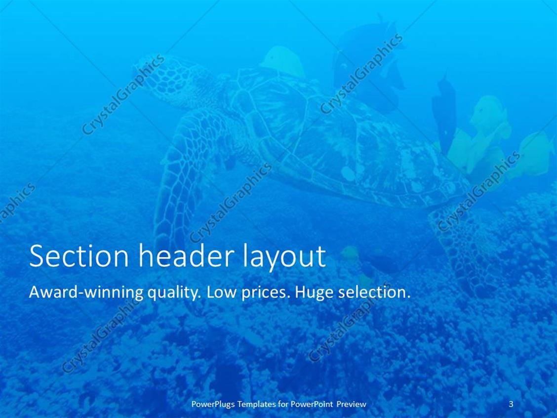 shark powerpoint template gallery - templates example free download, Modern powerpoint