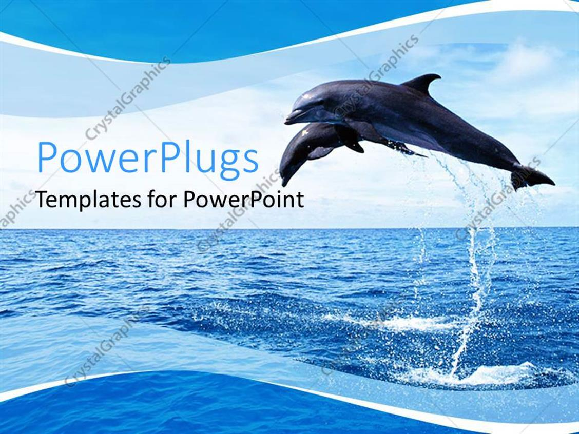 PowerPoint Template Displaying Two Dolphins Jumping Out of Ocean Water, Blue and White Wave Border