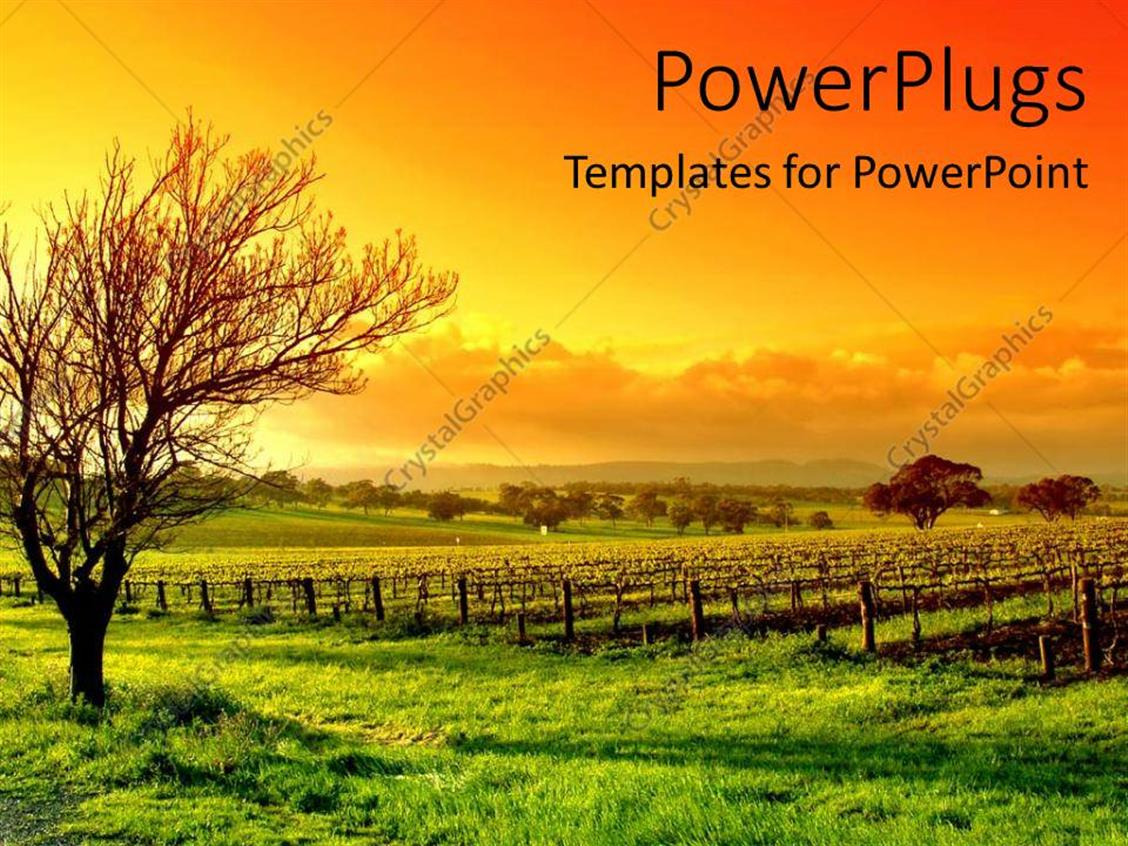 Powerpoint nature templates images templates example free download nature powerpoint templates images templates example free download comfortable nature powerpoint template gallery resume templates powerpoint toneelgroepblik