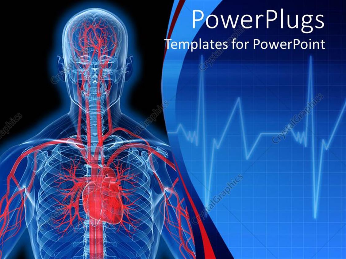 Powerpoint template visualization of human anatomy in blue with powerpoint template displaying visualization of human anatomy in blue with heart and veins in red toneelgroepblik Choice Image