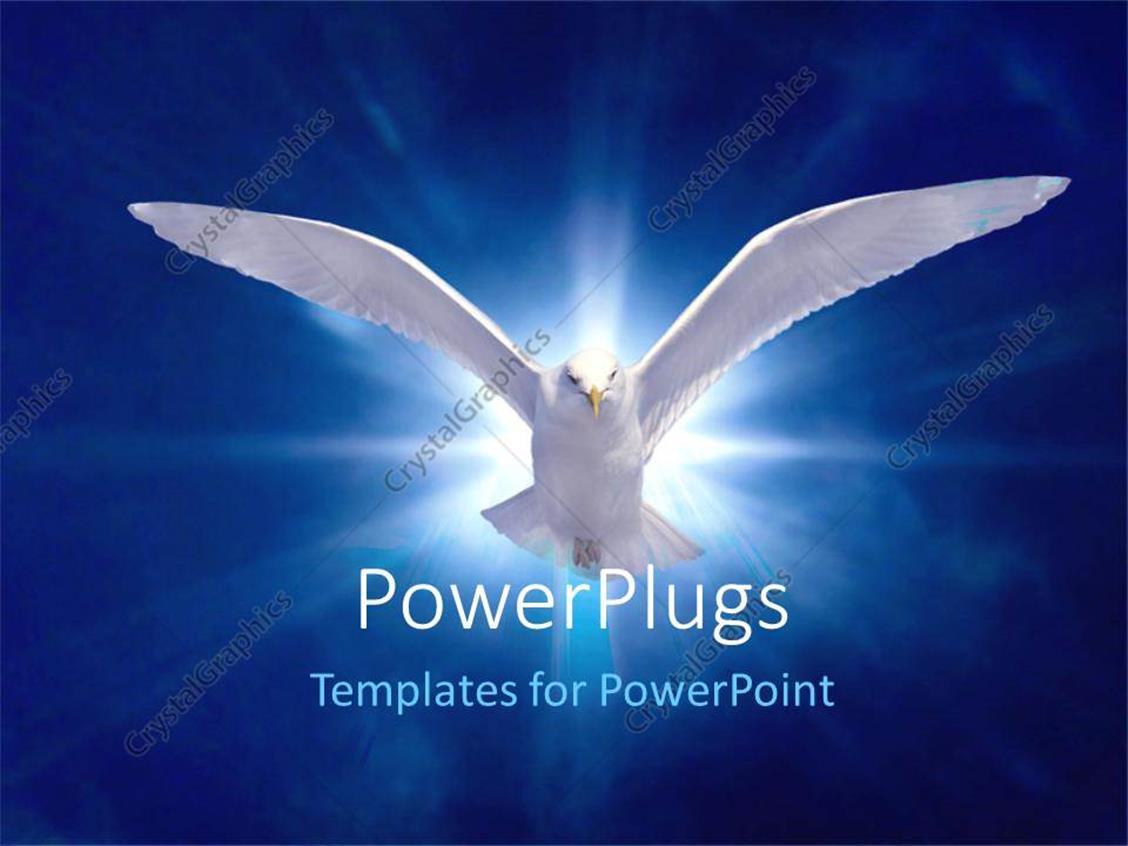 PowerPoint Template: White bird in flight on bright blue
