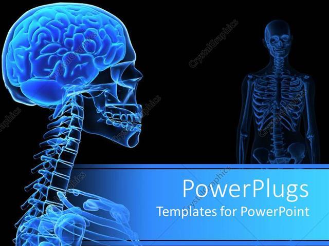 Powerpoint template x ray of the human head showing on black powerpoint template displaying x ray of the human head showing on black background toneelgroepblik Gallery