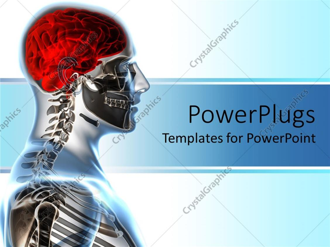 Anatomy Powerpoint Templates