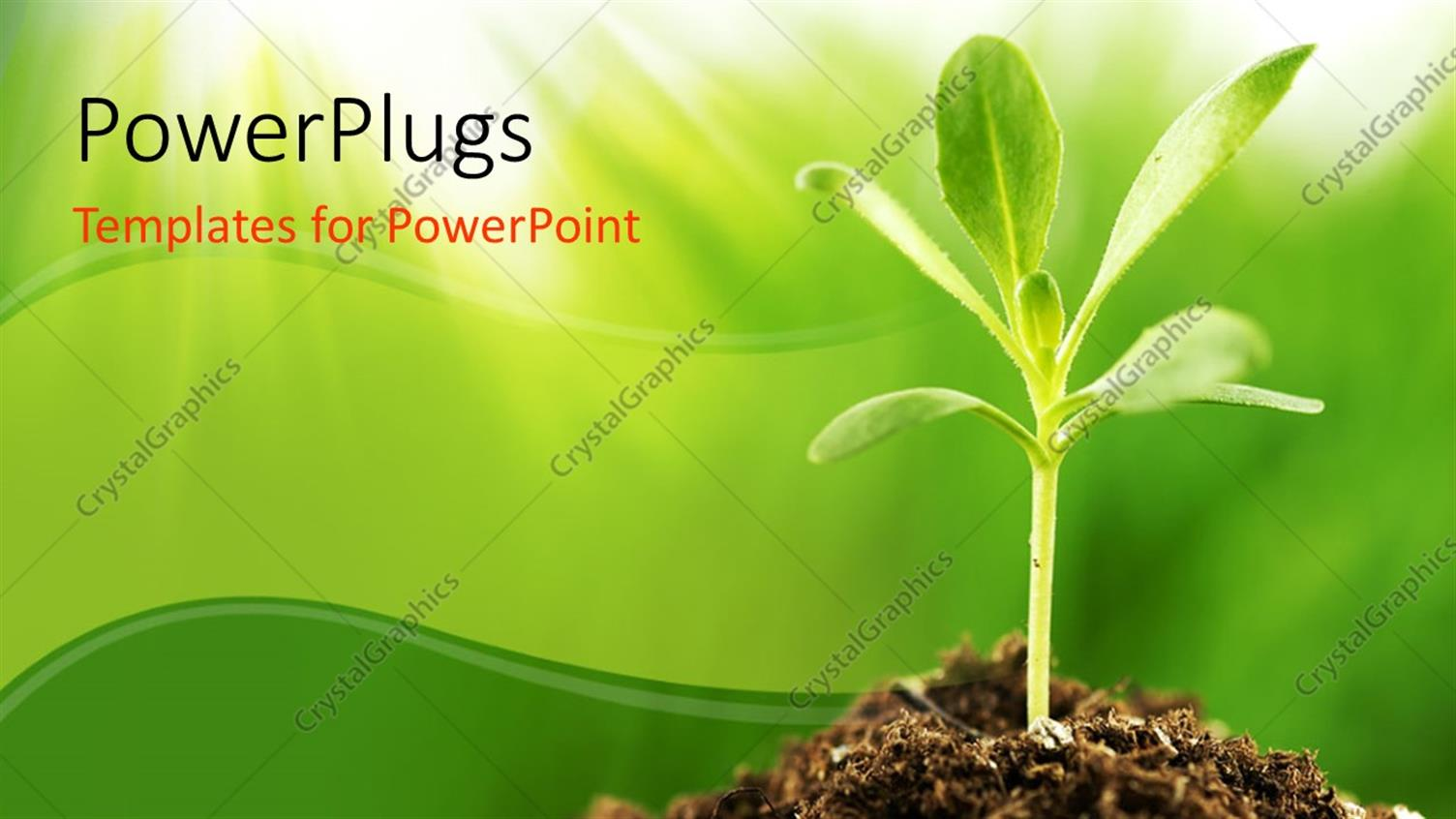 Agriculture powerpoint template image collections templates powerpoint template young green plant growing in sunshine 32152 powerpoint template displaying young green plant growing toneelgroepblik Image collections